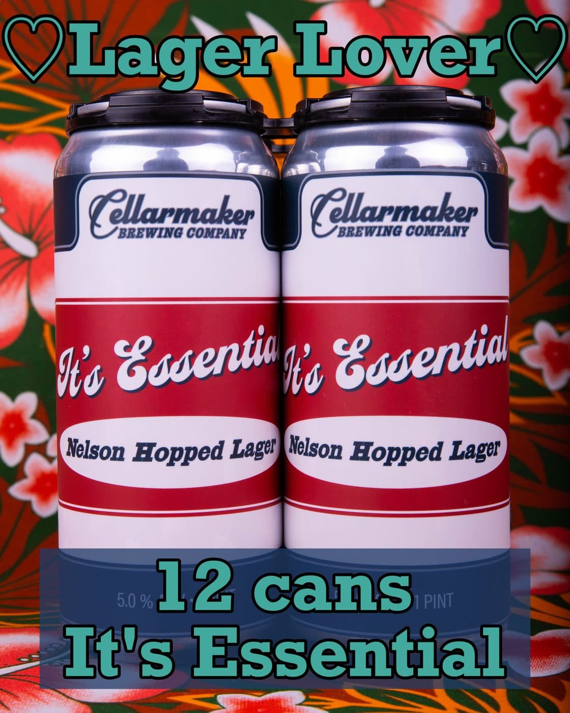 LAGER LOVER ~ 12 CANS It's Essential! … SHIPPING Out On TUESDAY 8/11 For NEXT DAY Delivery*