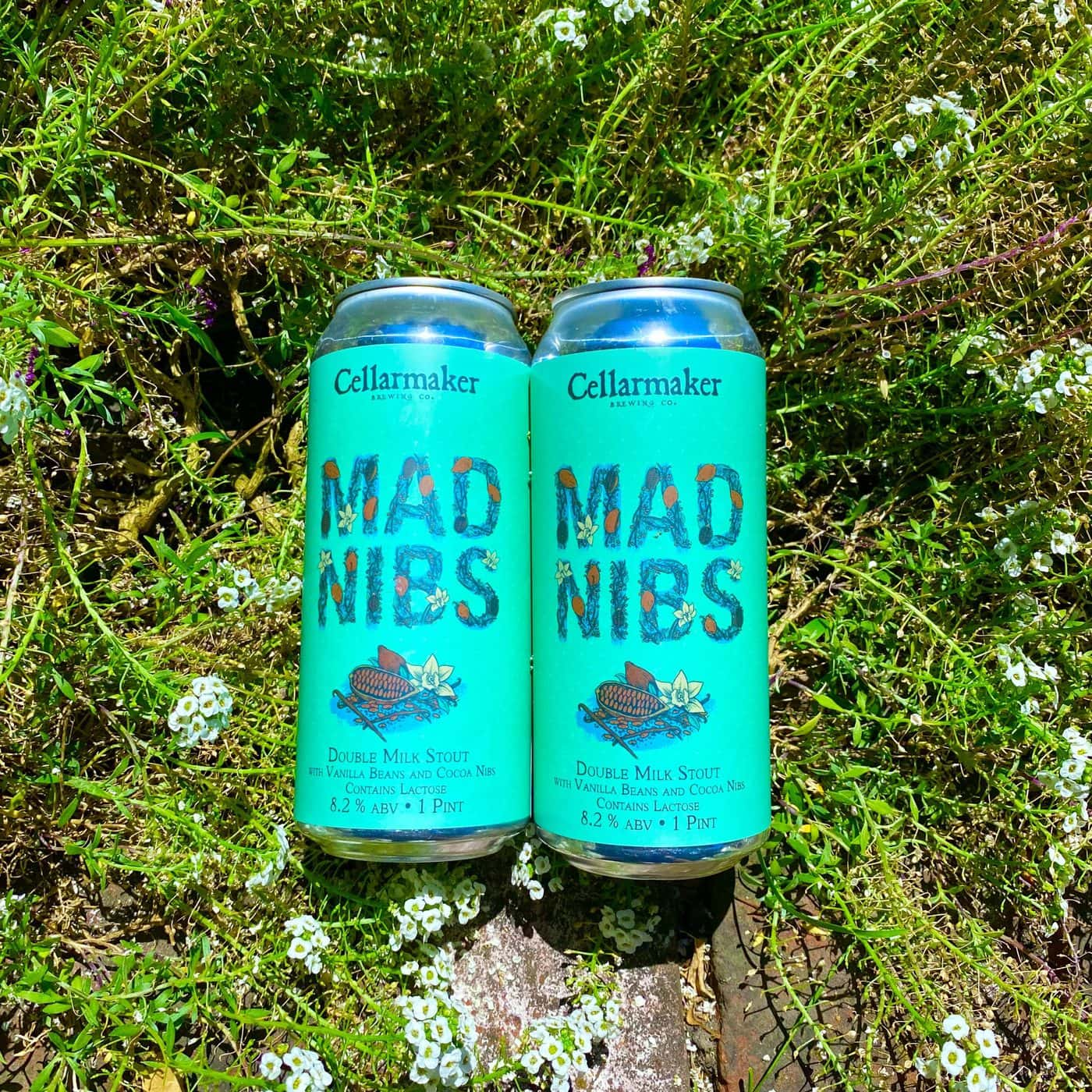 12 CANS – Mad Nibs Double Milk Stout  – Shipping Out Tuesday 6/22 For Next Day Delivery*