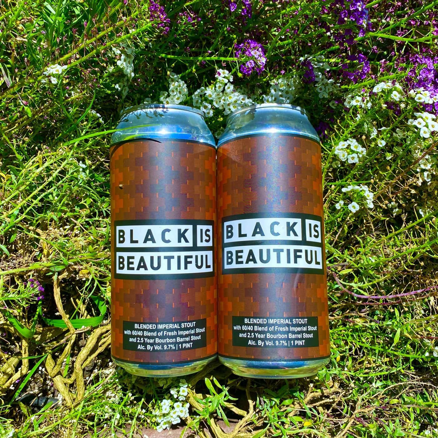 12 CANS Black Is Beautiful Blended Imperial Stout – Shipping Out Tuesday 6/22 For Next Day Delivery*