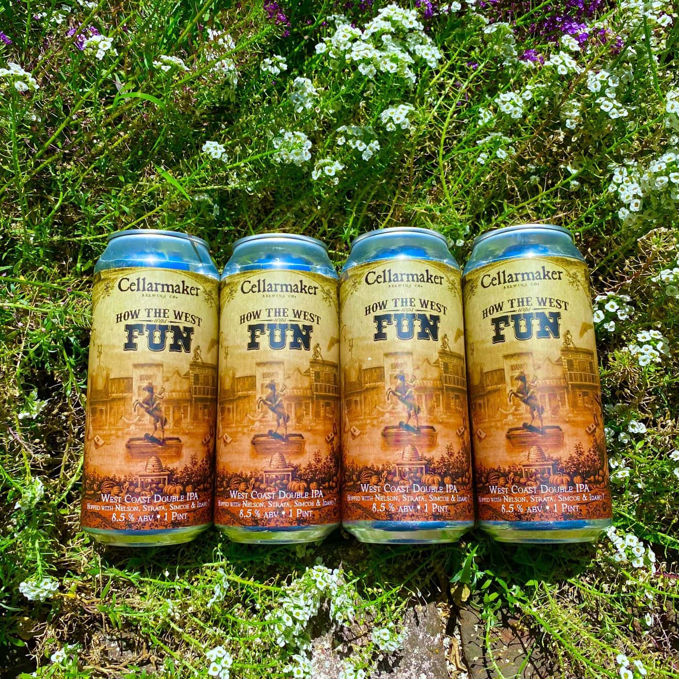 FULL CASE 24 CANS How The West Was Fun DIPA – Shipping Out Tuesday 6/22 For Next Day Delivery*